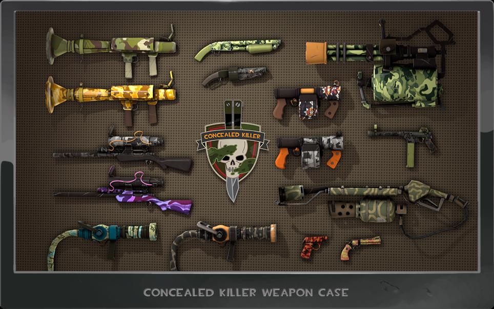 concealed_killer_case4.png